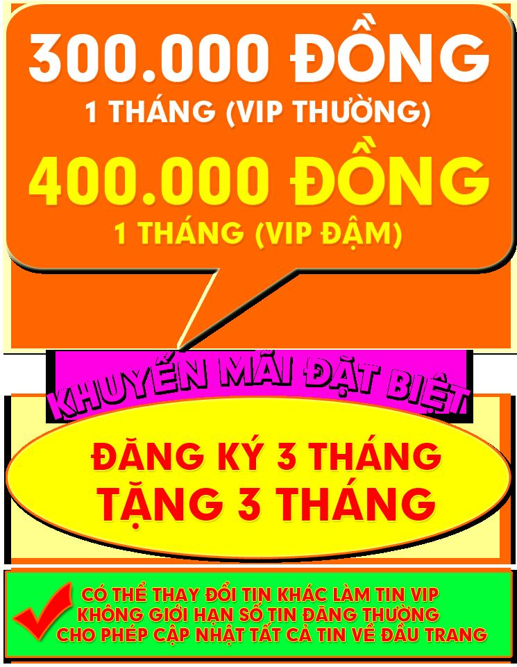 Chi phí VIP nhà đất vàng